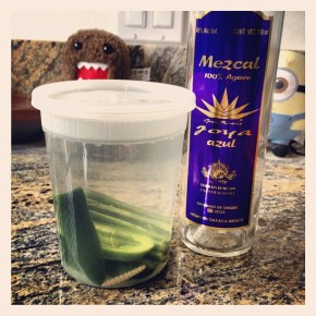 Jalapeño infused Mezcal